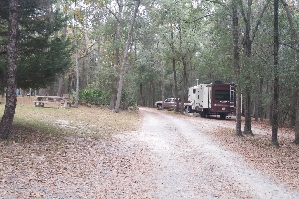 Campsite at General Coffee