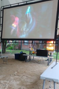 Ice Age showing on the beach