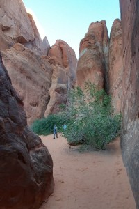 Chasm to Sand Dune Arch